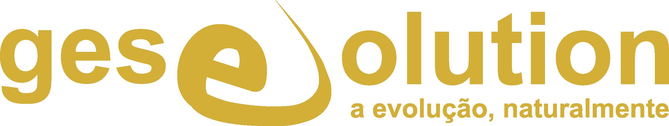 Logo GesEvolution